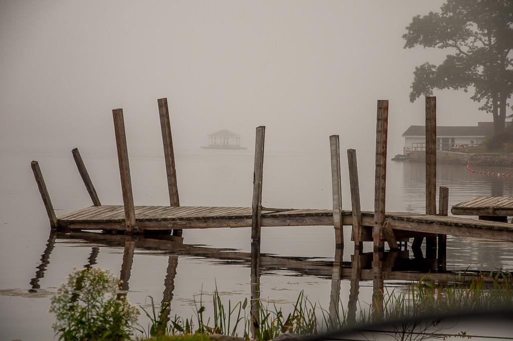 Fog by joansmor