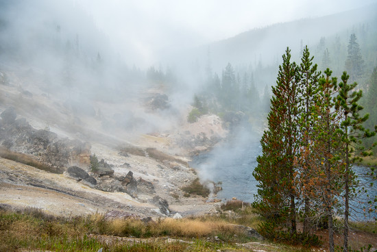 Foggy morning and small hot springs along the river in Yellowstone  by dridsdale