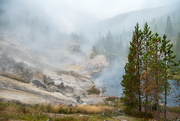 11th Sep 2017 - Foggy morning and small hot springs along the river in Yellowstone