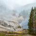 Foggy morning and small hot springs along the river in Yellowstone