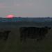 Kansas Sunset 9-29-17