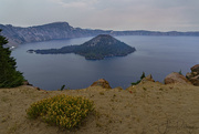 22nd Sep 2017 - Still Some Flowers At Crater Lake