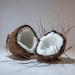 Coconut by peadar
