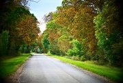 24th Sep 2017 - Country Road....