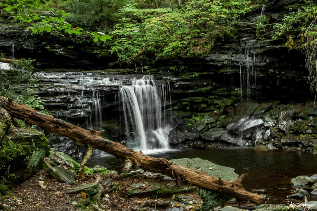 Ricketts Glen Waterfall by skipt07