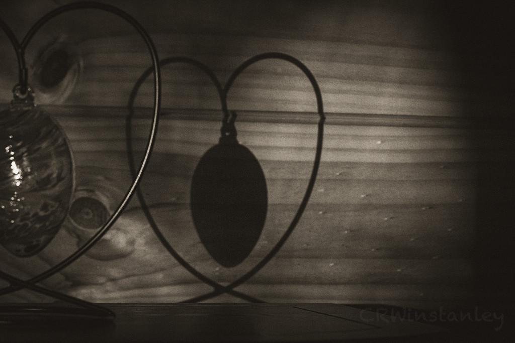 Day 269 Shadow Sepia by kipper1951