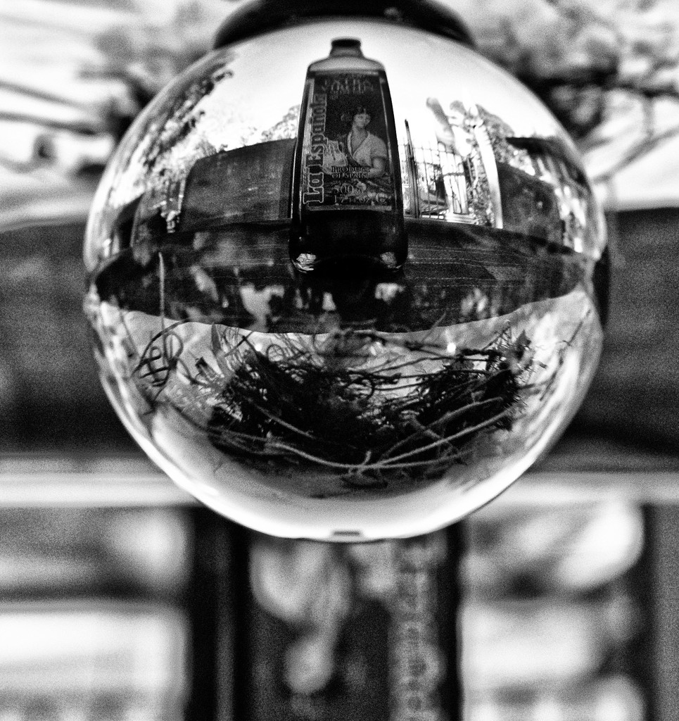 B&W Refraction 1 by annied