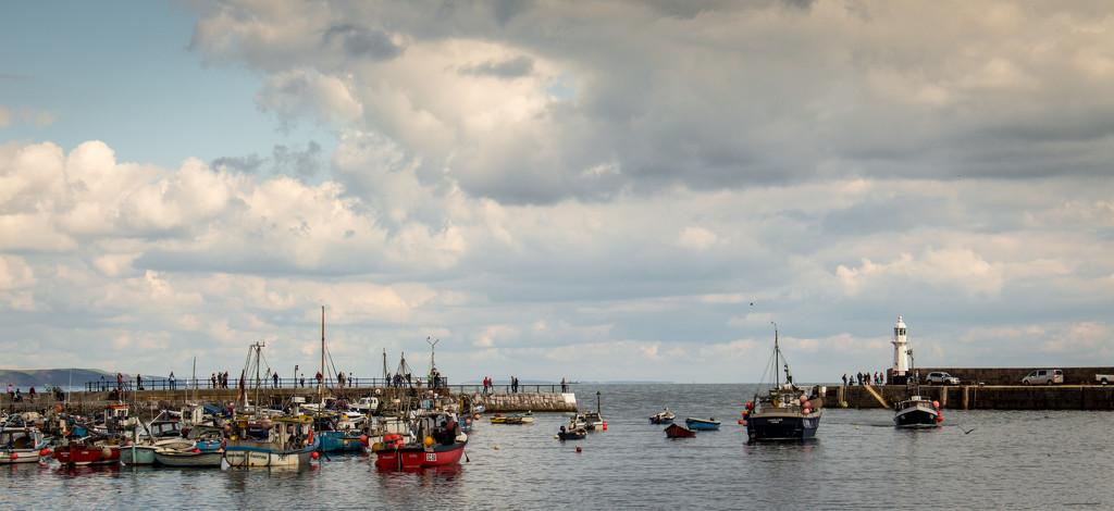 Mevagissey harbour  by swillinbillyflynn