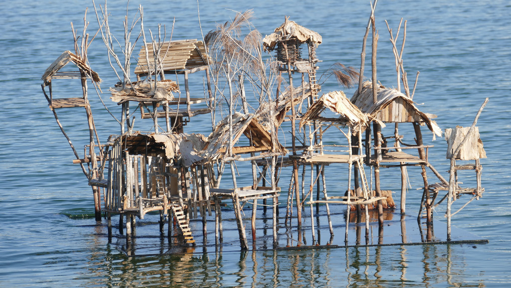 Against the Tide  - installation at Noosa by hrs