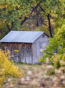 1st Oct 2017 - autumnal barn