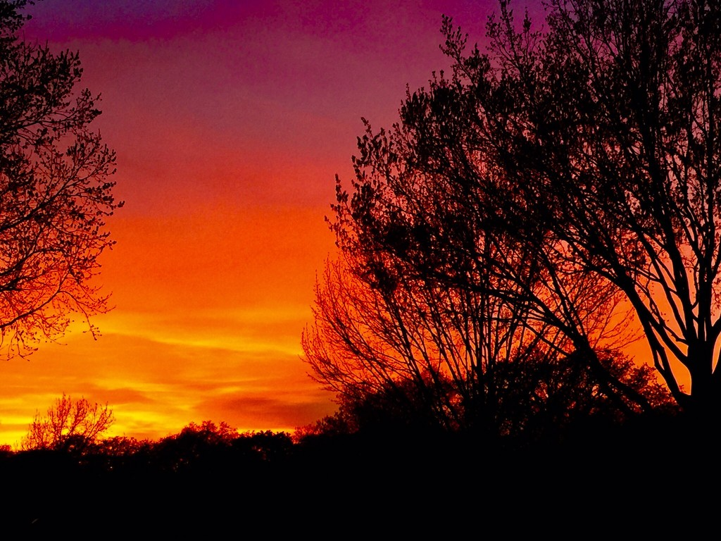 Red sunsets by louannwarren