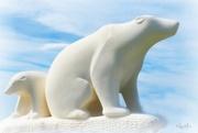 4th Oct 2017 - Polar life
