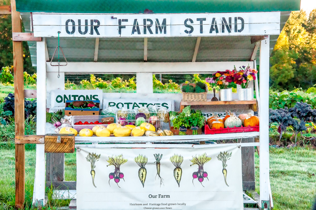 Farm Stand by joansmor