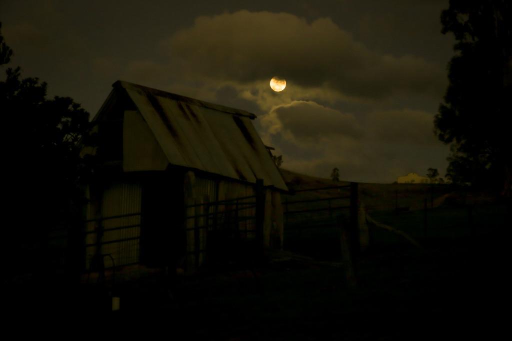 Full Moon by purdey