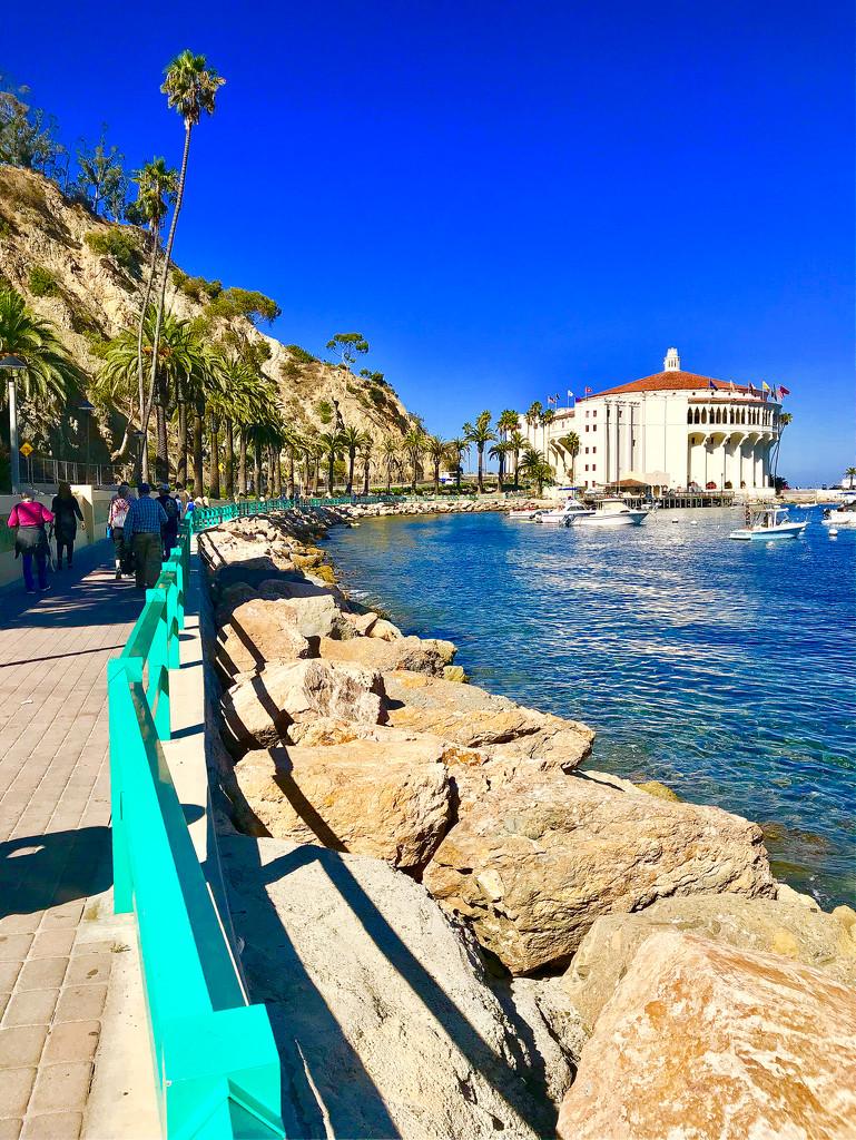 Catalina Casino by gardenfolk
