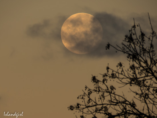 The Moon this morning by radiogirl
