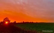7th Oct 2017 - Orange sky