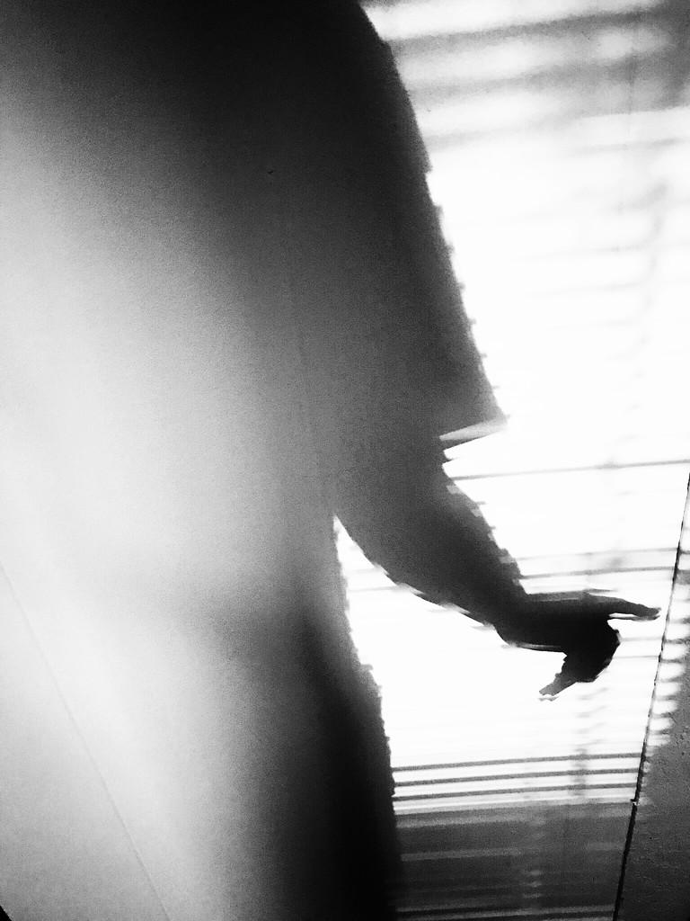 Window shadeOw by joemuli