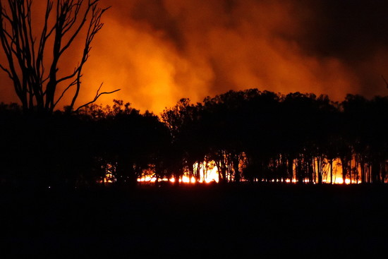 Controlled Burn by ubobohobo