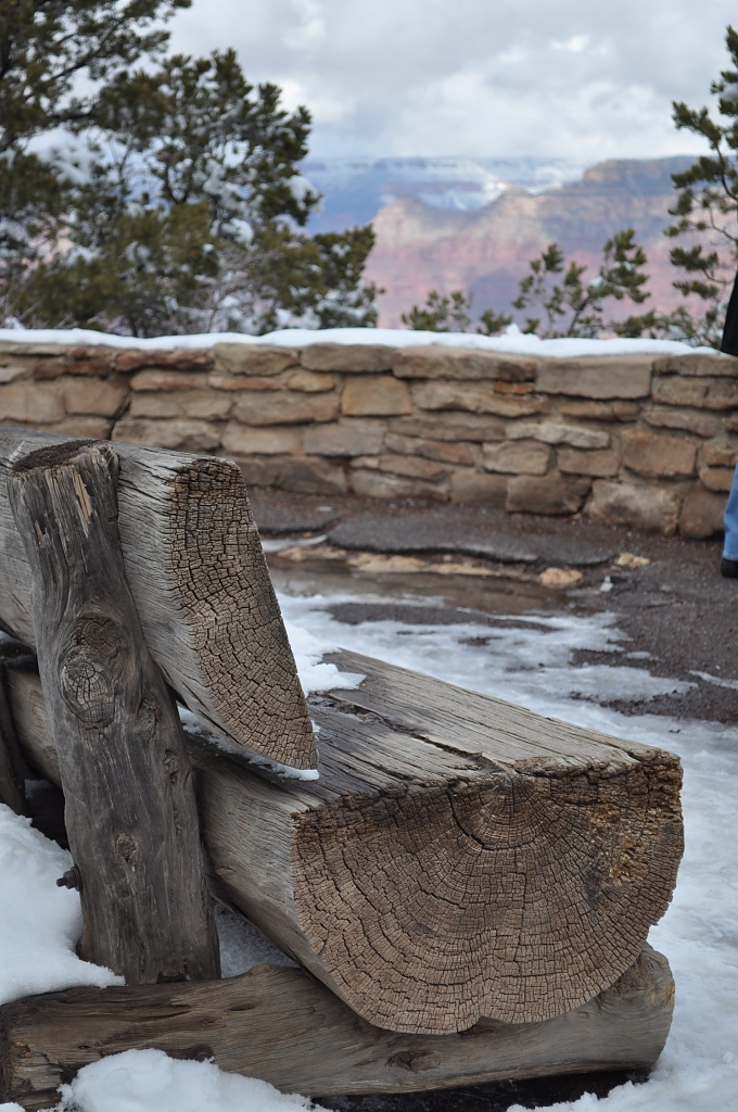 A bench at the Grand Canyon by dora