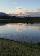 8th Oct 2017 - Morning reflections