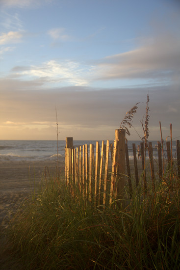 Dune Fence by calm
