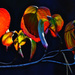 Autumn Leaves by joysfocus