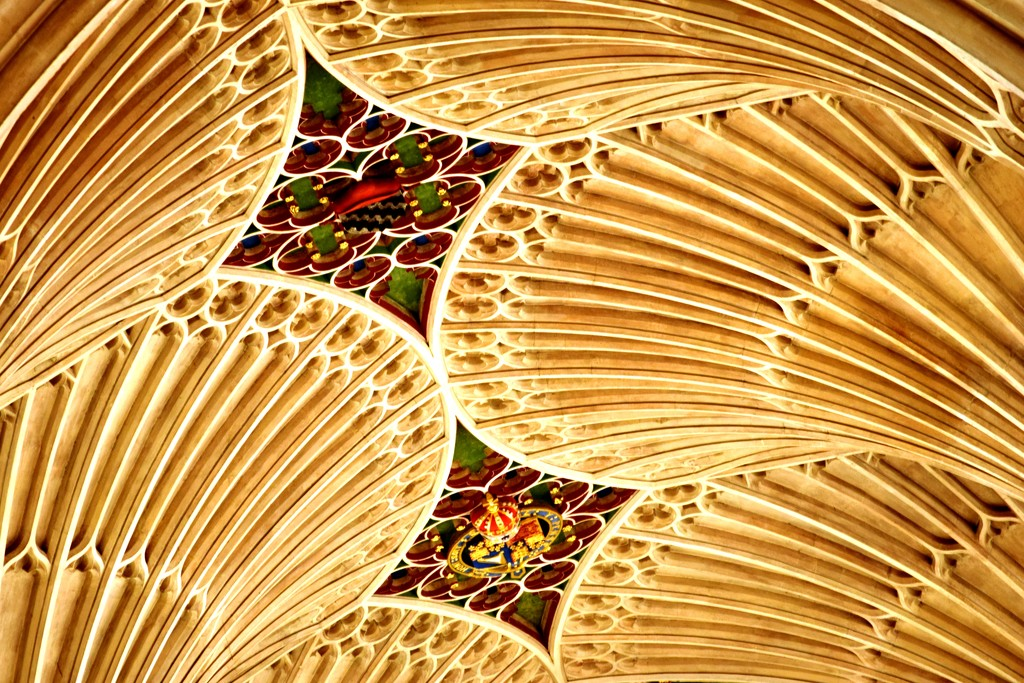 ceiling by christophercox