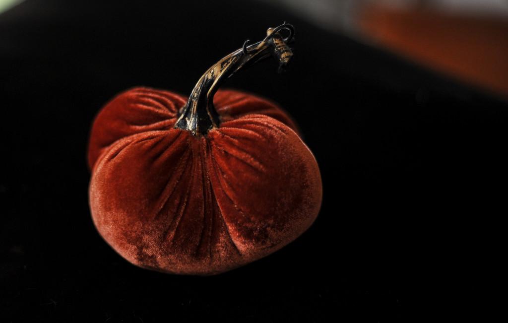 Pumpkin 4 by loweygrace