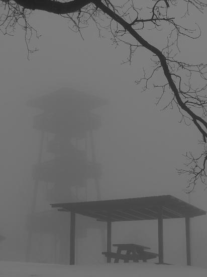 Fog by juletee