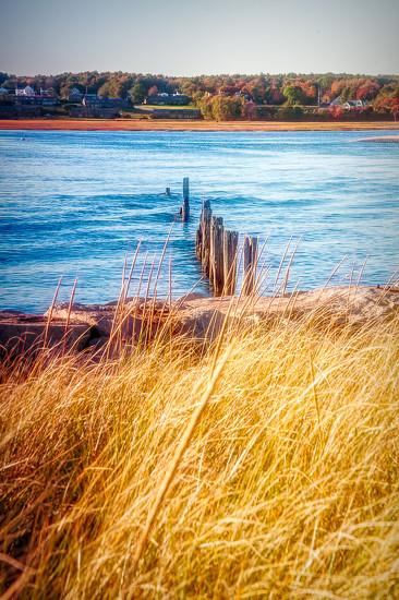 Fall at the coast by joansmor