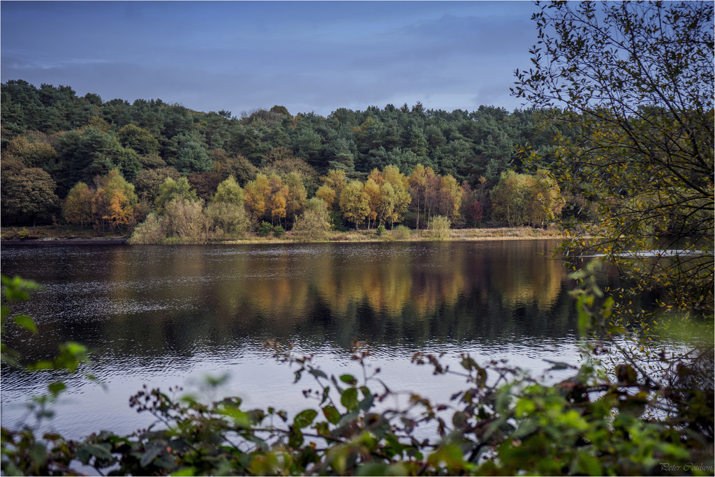 Reflected Colours by pcoulson