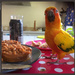 Breakfast Banditry by alia_801