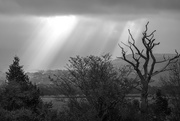 14th Oct 2017 - sunrays over Bassenthwaite