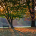 Fall Sunrise by not_left_handed