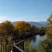 autumn deck