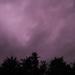 Sunday, October 8, 2017 – PURPLE RAIN