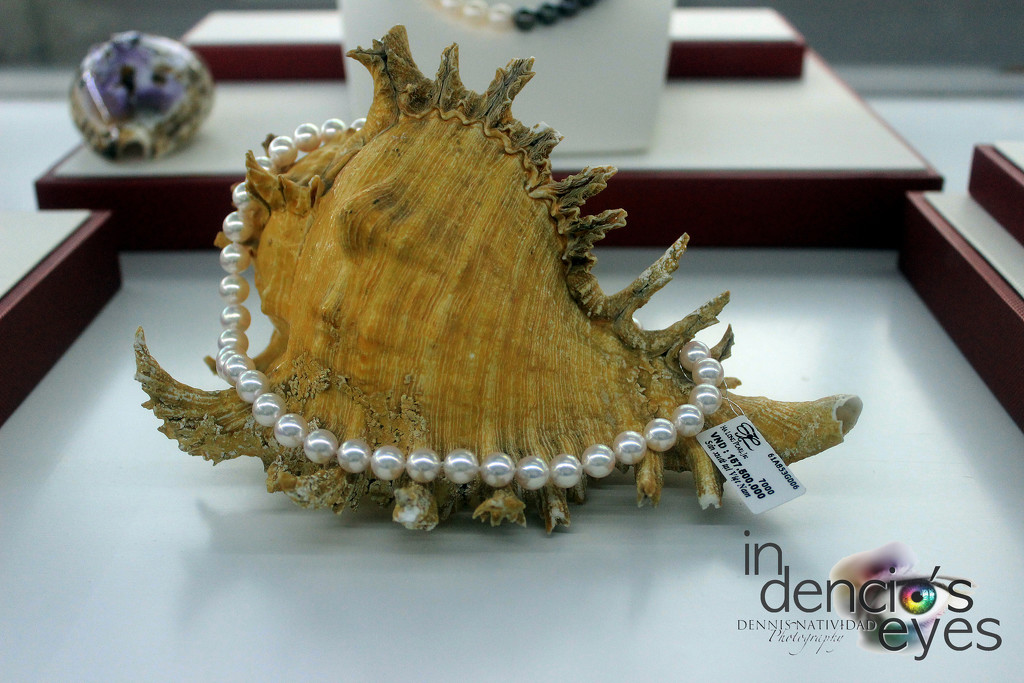 White Pearl Necklace by iamdencio