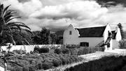 20th Oct 2017 - Cape Dutch homestead