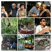 14th Oct 2017 - COLLAGE _ the tree house resort at Jaipur