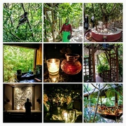 15th Oct 2017 - COLLAGE tree house