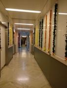 19th Oct 2017 - Hospital corridor