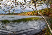 18th Oct 2017 - Sandy Lake