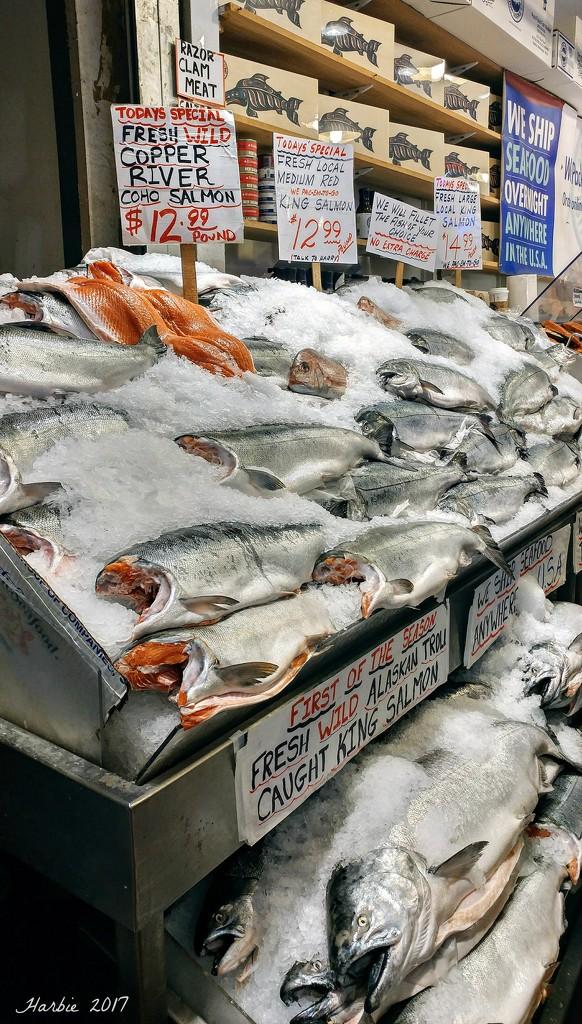 Fresh Fish by harbie