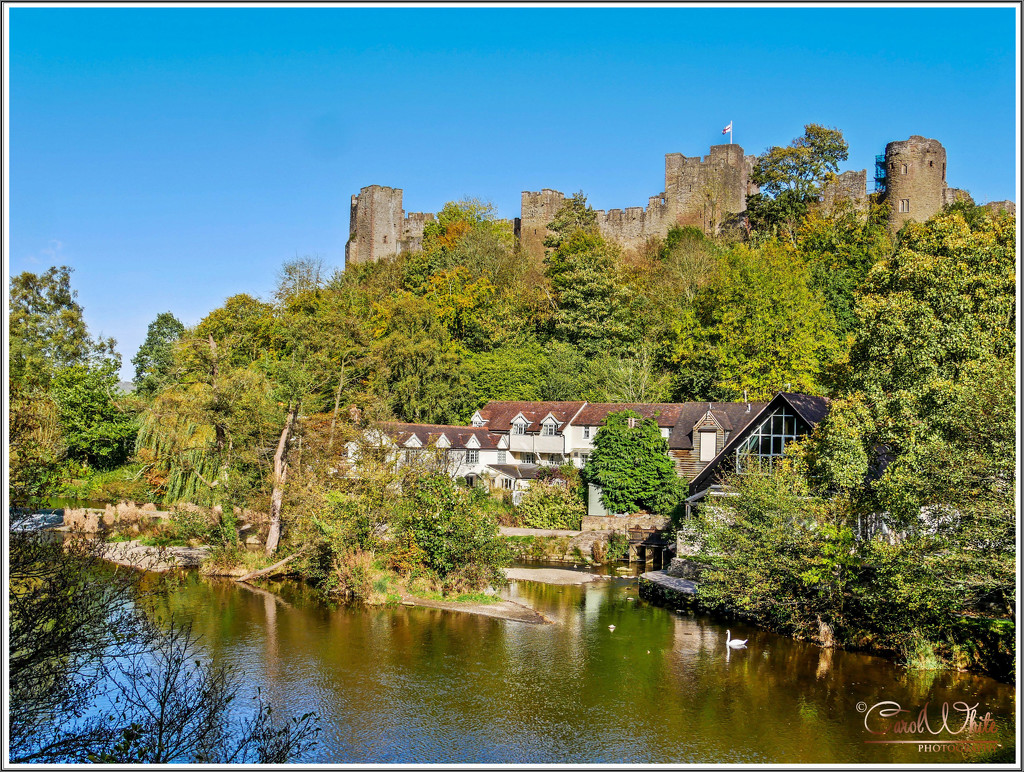 Ludlow Castle And The River Teme by carolmw