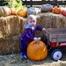 Pumpkin Patch fun by louannwarren