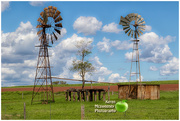25th Oct 2017 - Windmills at Coolabunia