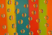 24th Oct 2017 - Rainbow Droplets!