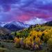 Luminous Echoes of Nature