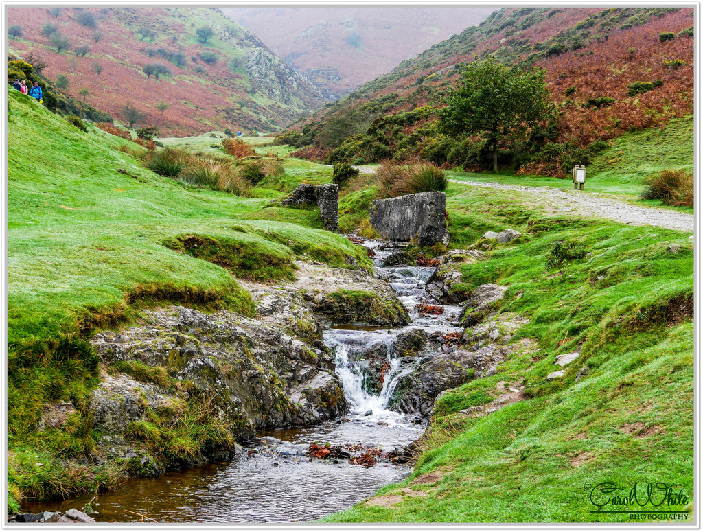 Carding Mill Valley nr. Church Stretton by carolmw